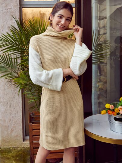 Turtle Neck Drop Shoulder Sweater Dress