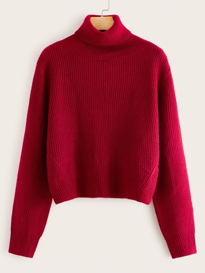 Turtle Neck Rib-knit Sweater
