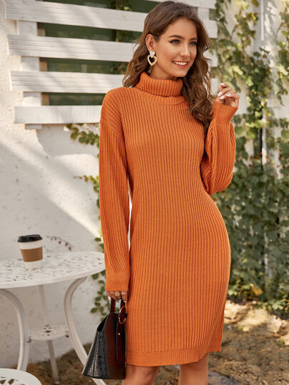 Turtle Neck Rib-knit Sweater Dress