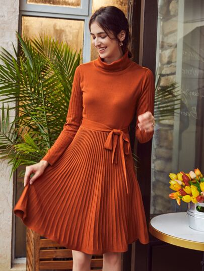 Turtle Neck Belted Sweater Dress